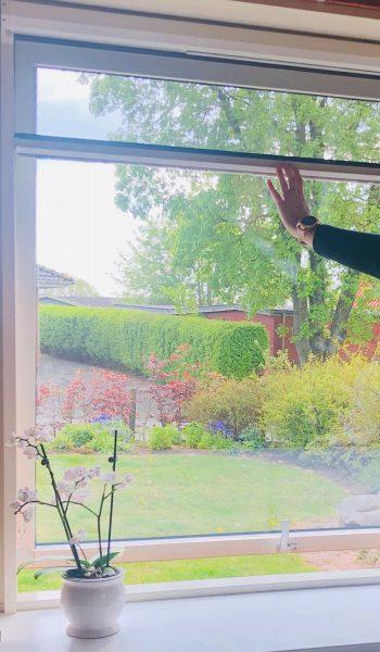 Rullenet vindue 2
