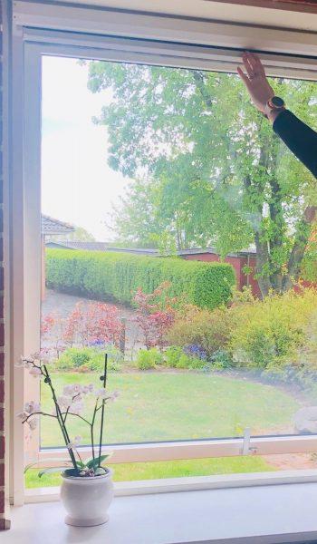 Rullenet vindue 3