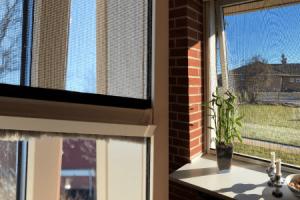 Rullenet-vinduer